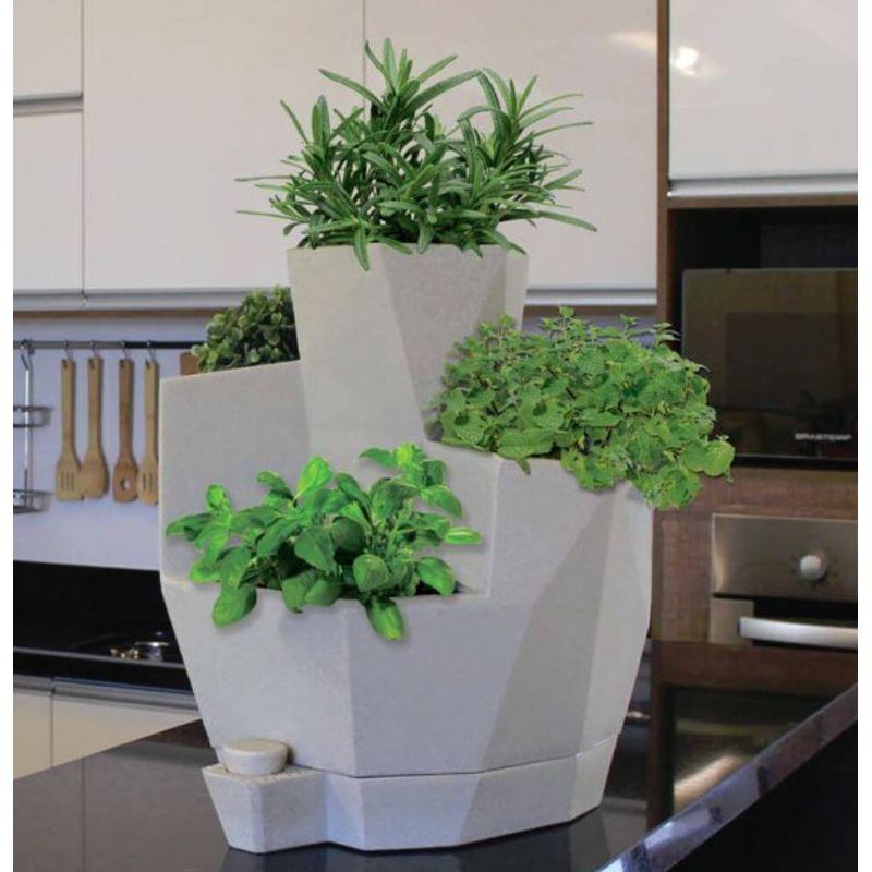 -jardim-de-temperos-vida-38x42.5cm-japi-cimento